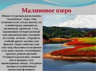"""Вблизи Астрахани расположены """"малиновые"""" озера. Они отличаются не только цвет"""