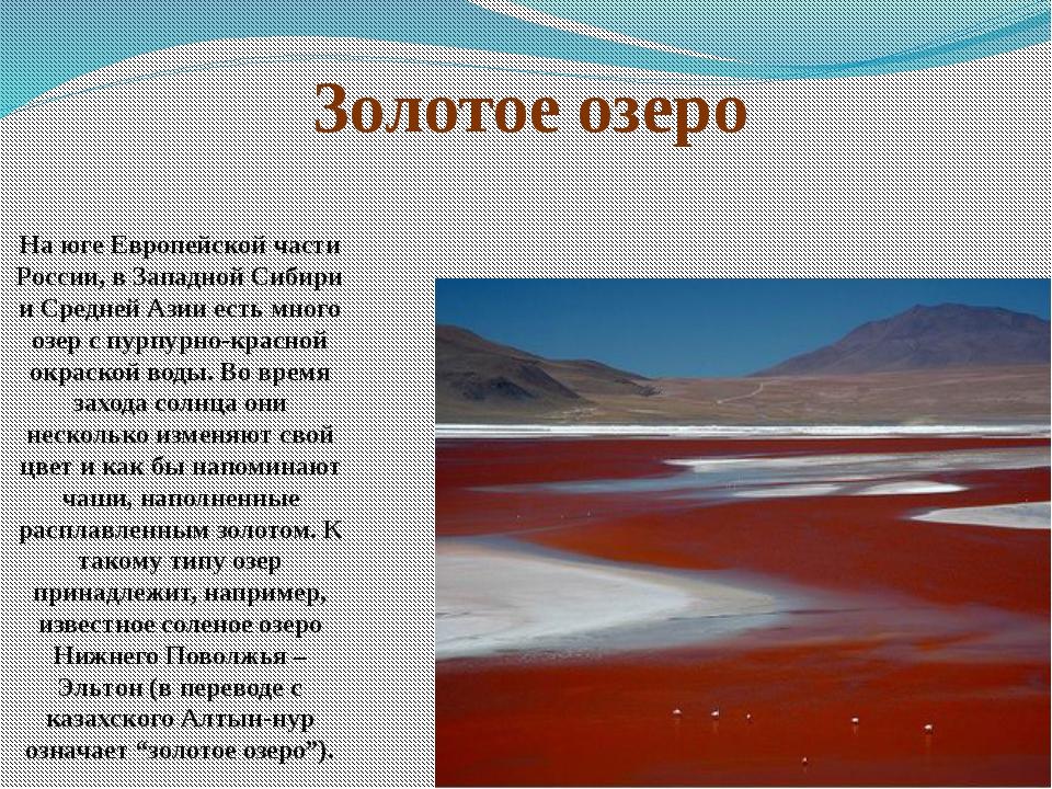 На юге Европейской части России, в Западной Сибири и Средней Азии есть много...