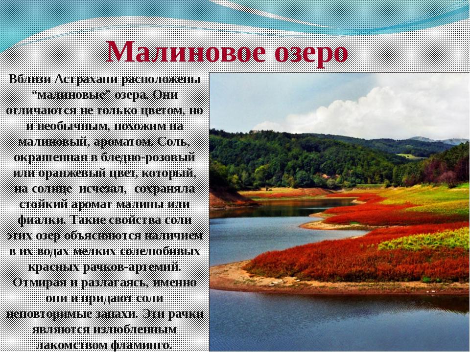 """Вблизи Астрахани расположены """"малиновые"""" озера. Они отличаются не только цвет..."""