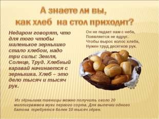 Недаром говорят, что для того чтобы маленькое зернышко стало хлебом, надо три