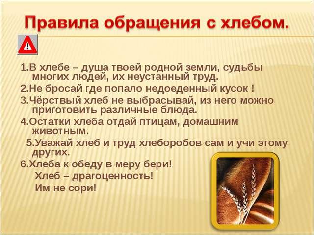 1.В хлебе – душа твоей родной земли, судьбы многих людей, их неустанный труд...