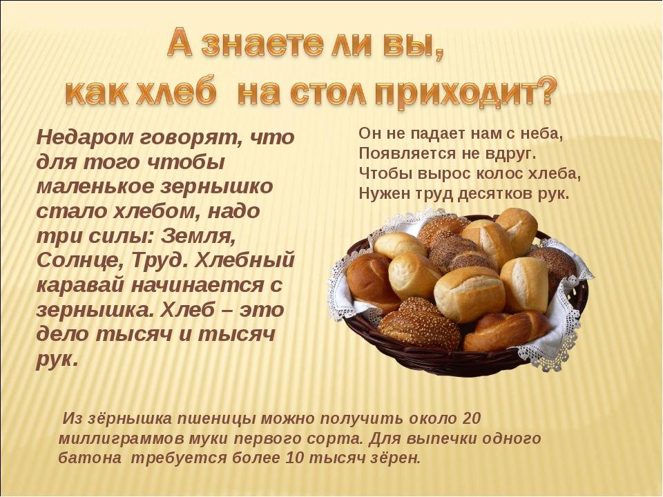 Недаром говорят, что для того чтобы маленькое зернышко стало хлебом, надо три...
