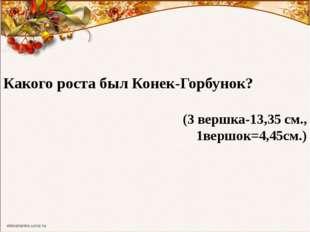 Какого роста был Конек-Горбунок? (3 вершка-13,35 см., 1вершок=4,45см.)