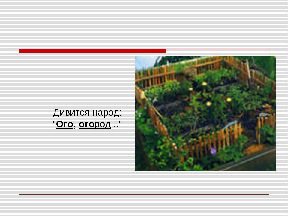 """Дивится народ: """"Ого,огород..."""""""