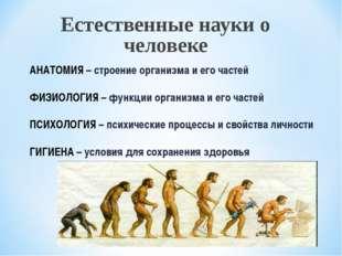 Естественные науки о человеке АНАТОМИЯ – строение организма и его частей ФИЗИ