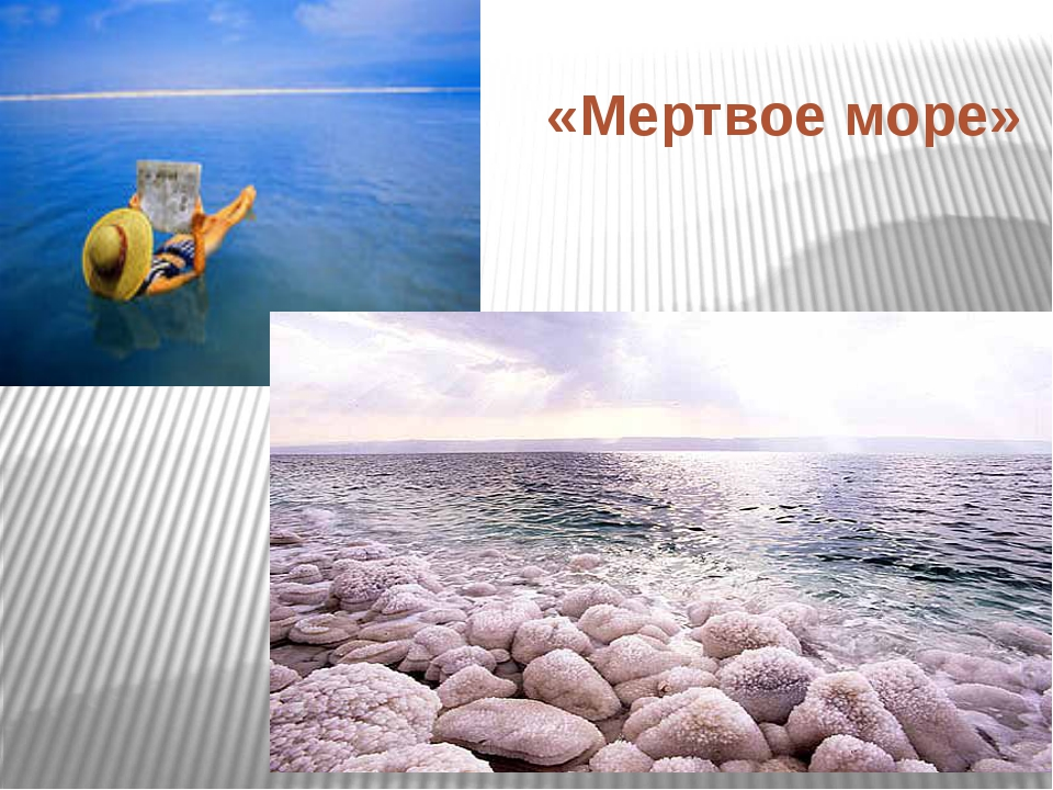 «Мертвое море»