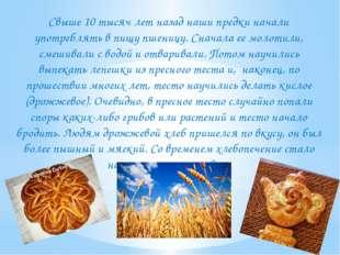 Свыше 10 тысяч лет назад наши предки начали употреблять в пищу пшеницу. Снач