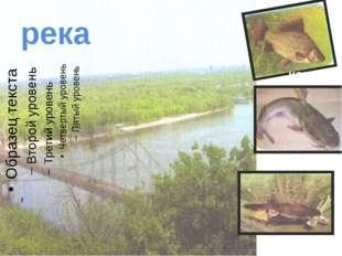 река карась сом утконос