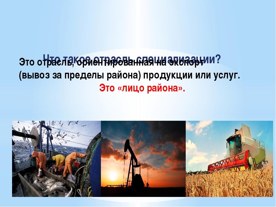 Что такое отрасль специализации? Это отрасль, ориентированная на экспорт (выв...