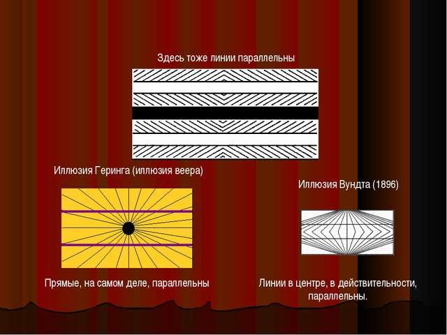 Иллюзия Геринга (иллюзия веера) Прямые, на самом деле, параллельны Линии в це...