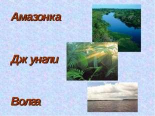 Амазонка Джунгли Волга