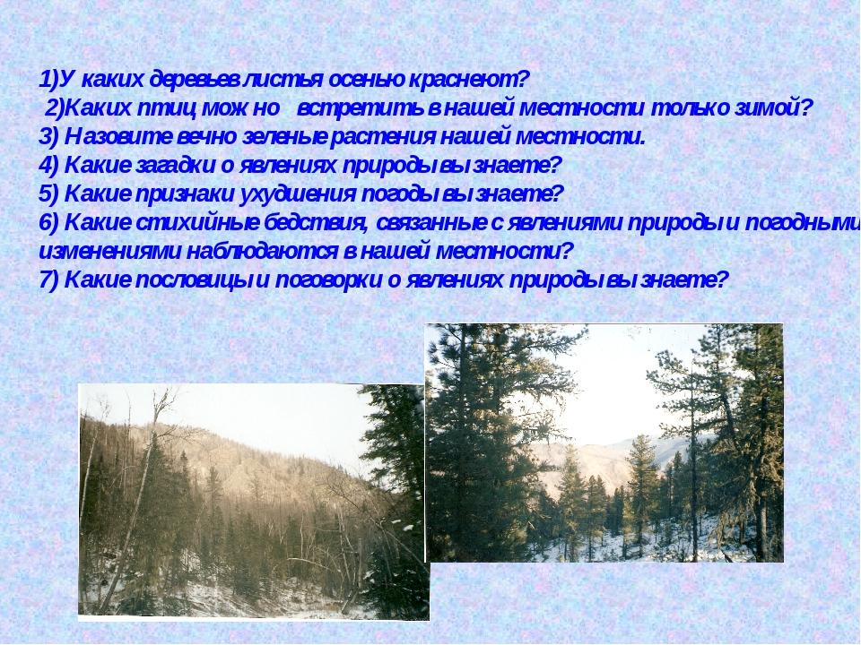 1)У каких деревьев листья осенью краснеют? 2)Каких птиц можно встретить в на...