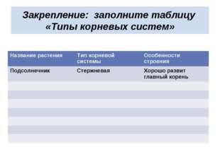 Закрепление: заполните таблицу «Типы корневых систем» Название растенияТип к