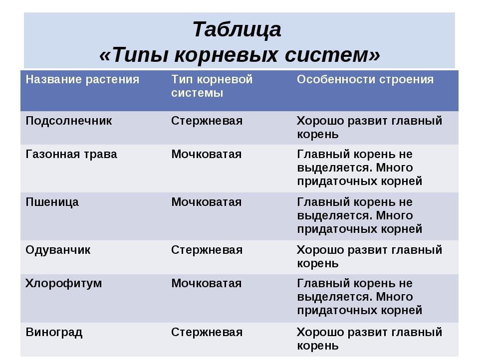 Таблица «Типы корневых систем» Название растенияТип корневой системыОсобенн...