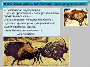 «Взгляните на морды быков. …нам не представить более разительного образа быч