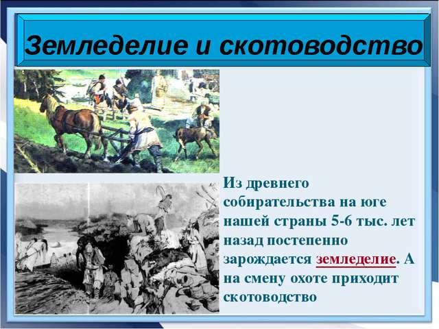 Из древнего собирательства на юге нашей страны 5-6 тыс. лет назад постепенно...