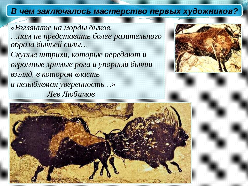 «Взгляните на морды быков. …нам не представить более разительного образа быч...