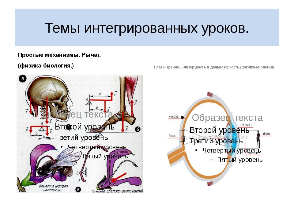 Темы интегрированных уроков. Простые механизмы. Рычаг. (физика-биология.) Гла...