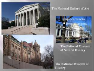 The National Museum of History The National Gallery of Art The National Muse