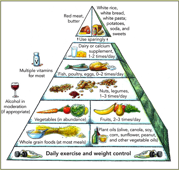 https://upload.wikimedia.org/wikipedia/commons/1/12/Harvard_food_pyramid.png