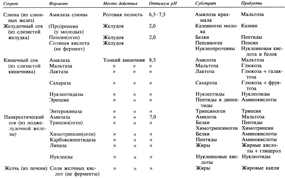 Таблица 10.8. Пищеварительные ферменты и их действие