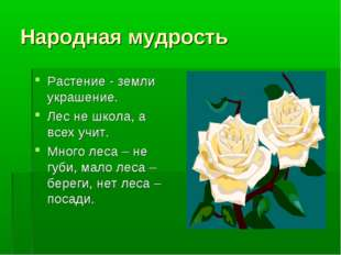 Народная мудрость Растение - земли украшение. Лес не школа, а всех учит. Мног