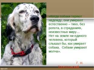 «Когда собаки теряют надежду, они умирают естественно – тихо, без ропота, в с