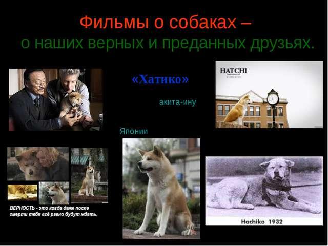 Фильмы о собаках – о наших верных и преданных друзьях. «Хатико» пёс породыа...
