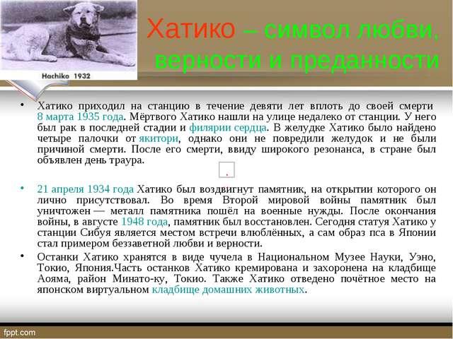 Хатико – символ любви, верности и преданности Хатико приходил на станцию в т...