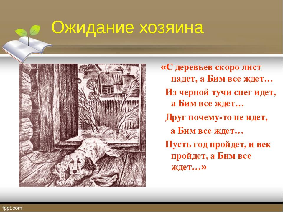 Ожидание хозяина «С деревьев скоро лист падет, а Бим все ждет… Из черной тучи...