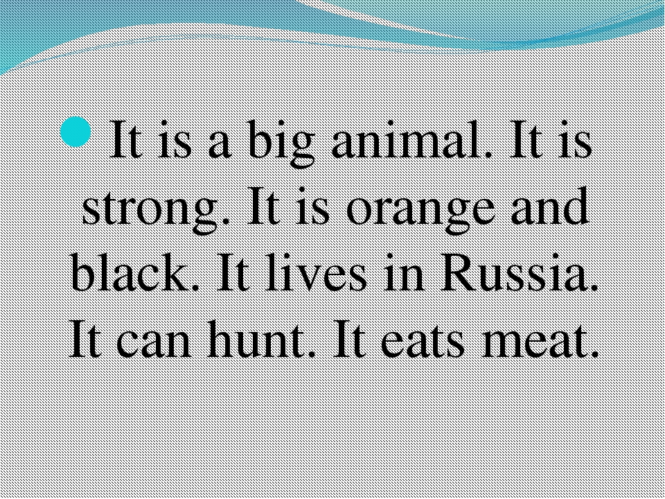 It is a big animal. It is strong. It is orange and black. It lives in Russia....