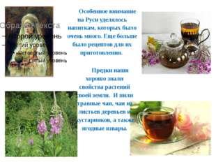 Особенное внимание на Руси уделялось напиткам, которых было очень много. Еще