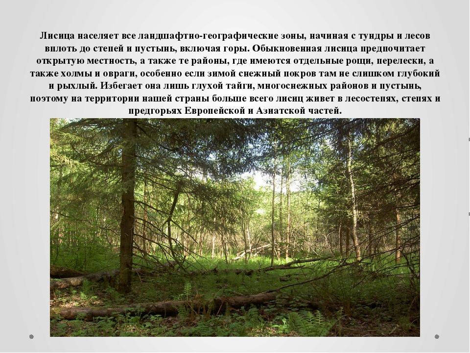 Лисица населяет все ландшафтно-географические зоны, начиная с тундры и лесов...
