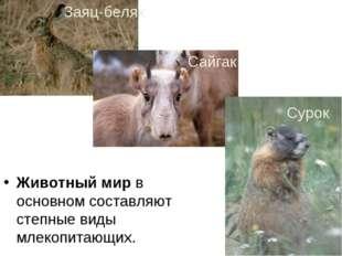 Животный мир в основном составляют степные виды млекопитающих. Заяц-беляк Сай