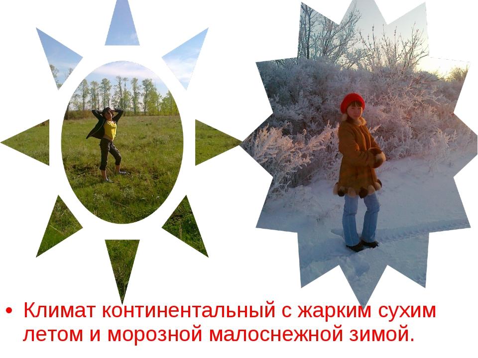 Климат континентальный с жарким сухим летом и морозной малоснежной зимой.