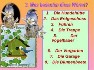 Die Hundehütte Das Erdgeschoss Führen Die Treppe Der Vogelbauer Der Vorgarten