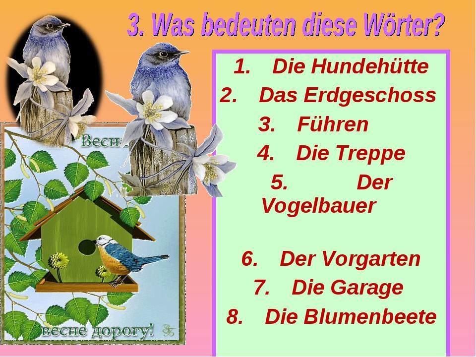 Die Hundehütte Das Erdgeschoss Führen Die Treppe Der Vogelbauer Der Vorgarten...