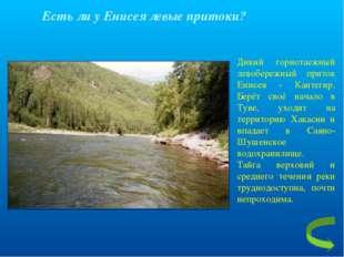 Есть ли у Енисея левые притоки? Дикий горнотаежный левобережный приток Енисея