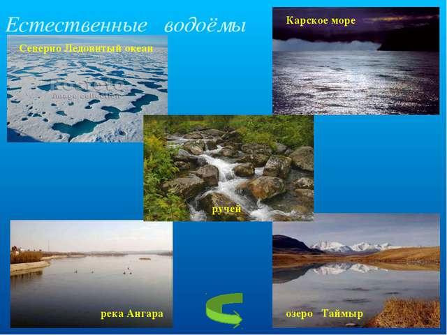 Естественные водоёмы Северно Ледовитый океан Карское море река Ангара озеро Т...