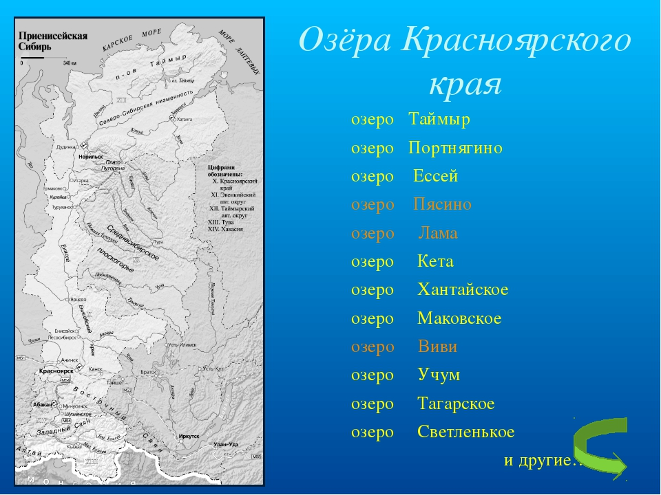 Озёра Красноярского края озеро Таймыр озеро Портнягино озеро Ессей озеро Пяси...