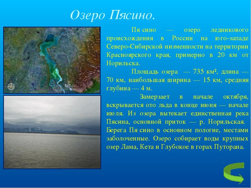 Озеро Пясино.  Пя́сино — озеро ледникового происхождения в России на юг...