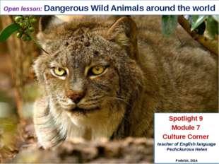 Open lesson: Dangerous Wild Animals around the world Spotlight 9 Module 7 Cul