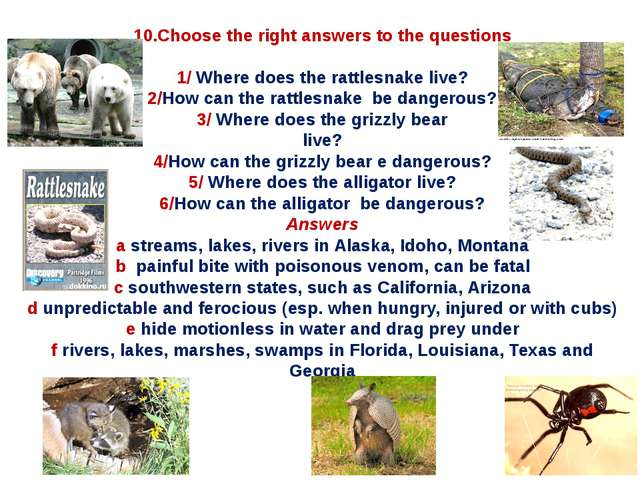 10.Choose the right answers to the questions 1/ Where does the rattlesnake li...