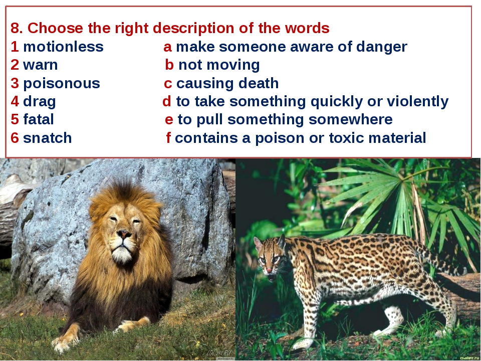 8. Choose the right description of the words 1 motionless a make someone awar...