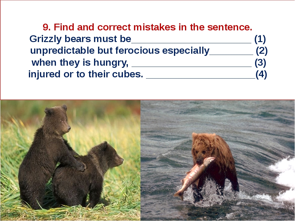 9. Find and correct mistakes in the sentence. Grizzly bears must be__________...