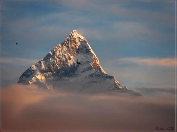 http://www.mestasily.ru/uploads/images/00/00/03/2012/11/30/7d0c2bb684.jpg