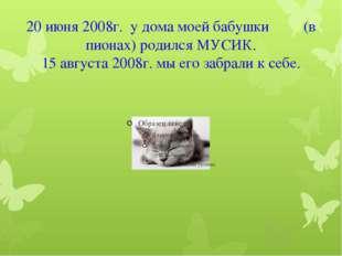 20 июня 2008г. у дома моей бабушки (в пионах) родился МУСИК. 15 августа 2008г