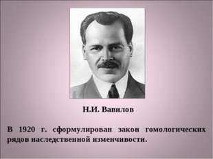 Н.И. Вавилов В 1920 г. сформулирован закон гомологических рядов наследственно