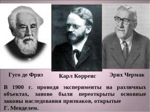 Гуго де Фриз Карл Корренс Эрих Чермак В 1900 г. проводя эксперименты на разли