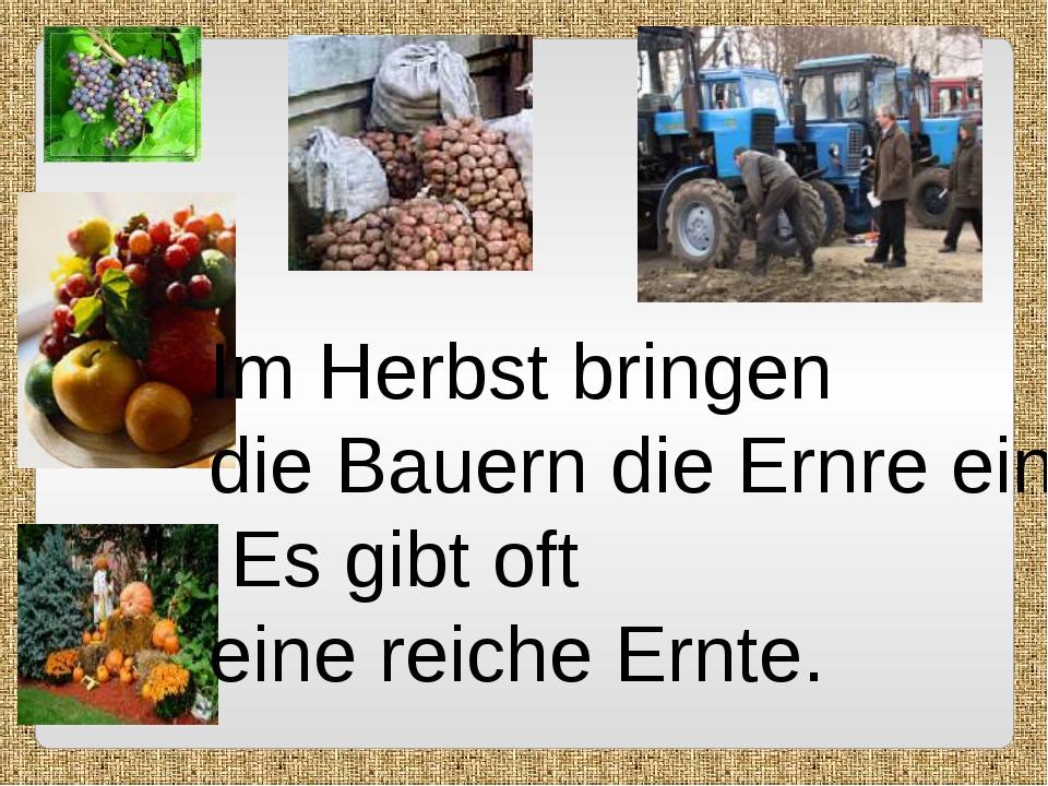 Im Herbst bringen die Bauern die Ernre ein. Es gibt oft eine reiche Ernte.